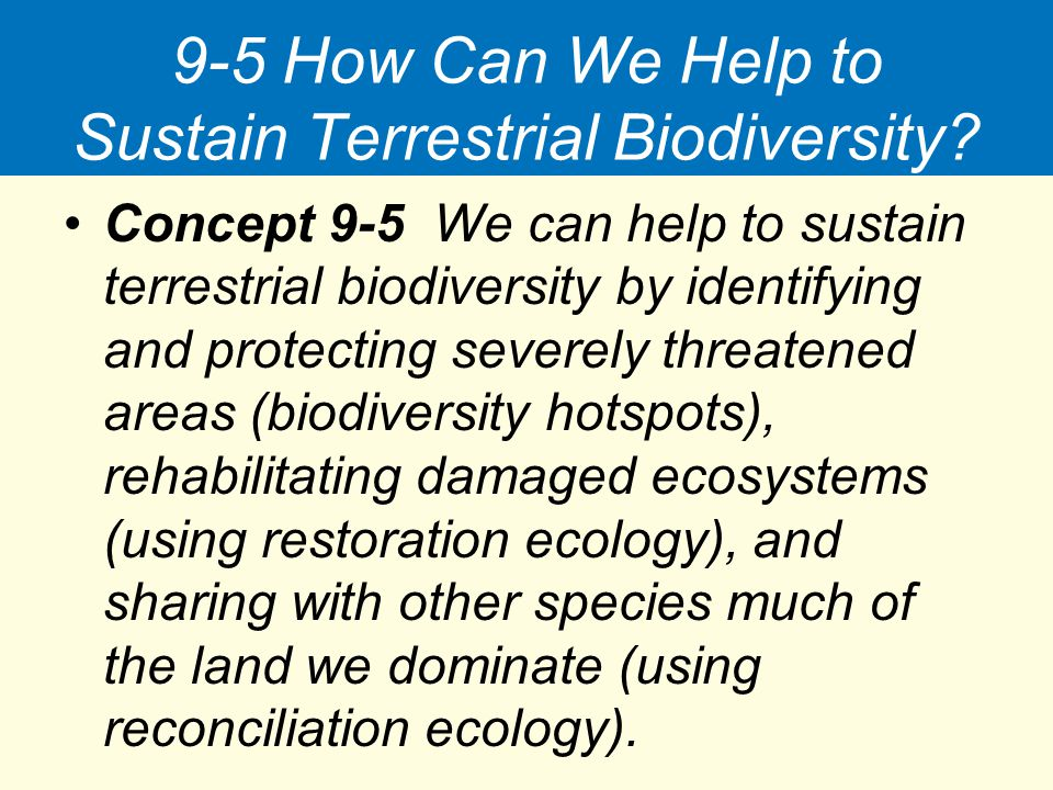 9-5 How Can We Help to Sustain Terrestrial Biodiversity