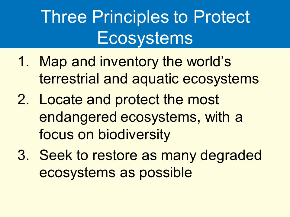Three Principles to Protect Ecosystems