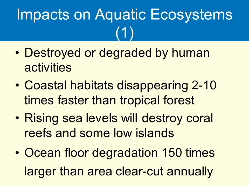 Impacts on Aquatic Ecosystems (1)