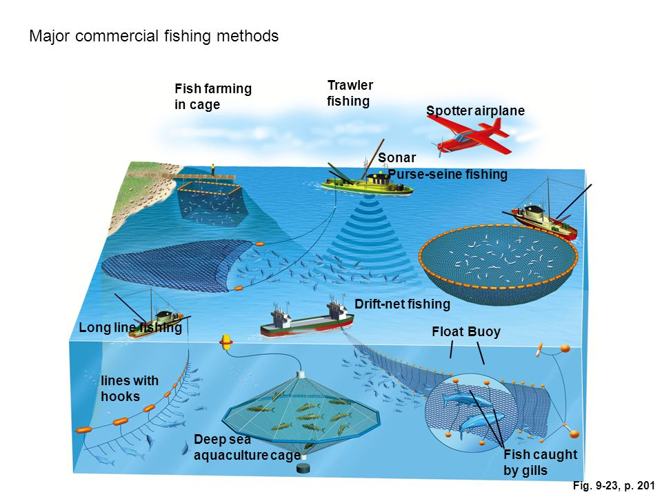Major commercial fishing methods