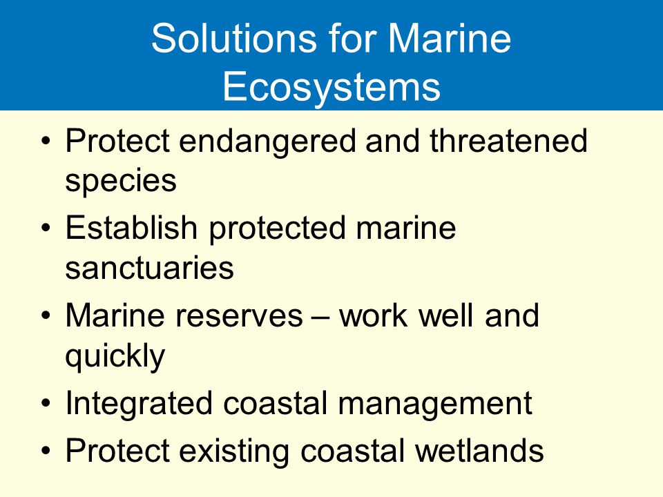 Solutions for Marine Ecosystems