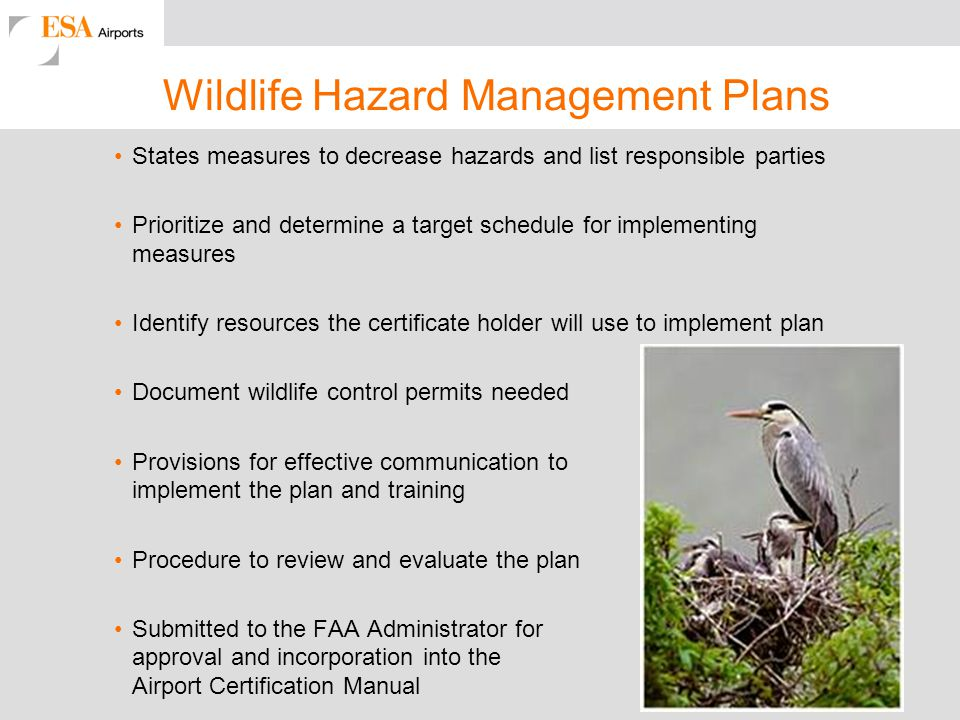 Wildlife Hazard Management Plans