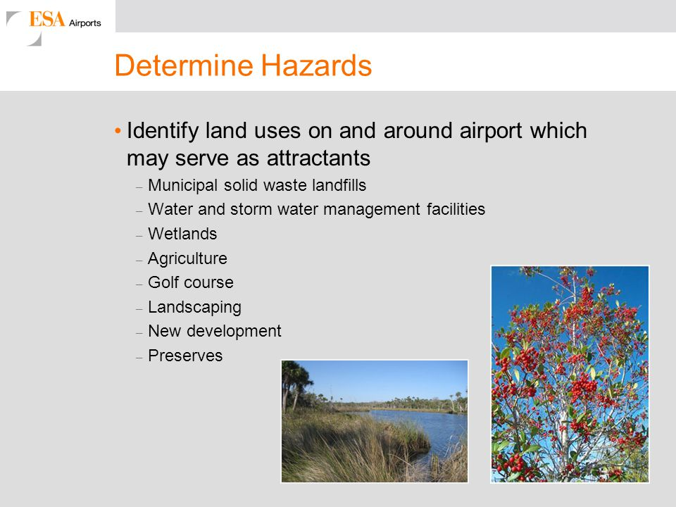 Determine Hazards Identify land uses on and around airport which may serve as attractants. Municipal solid waste landfills.