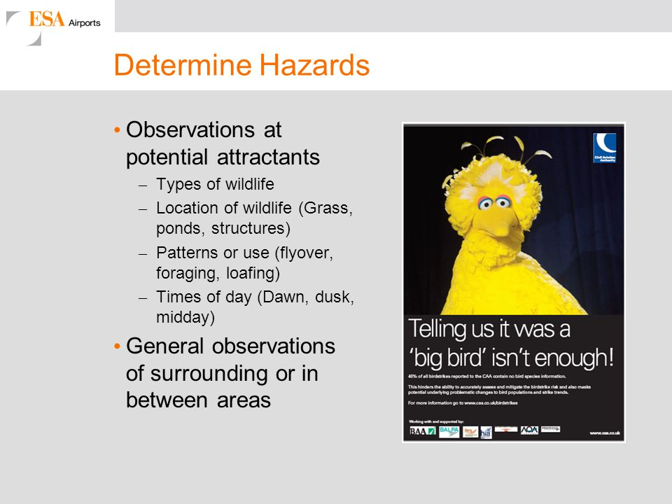 Determine Hazards Observations at potential attractants