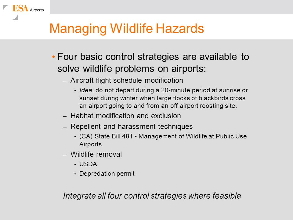 Managing Wildlife Hazards
