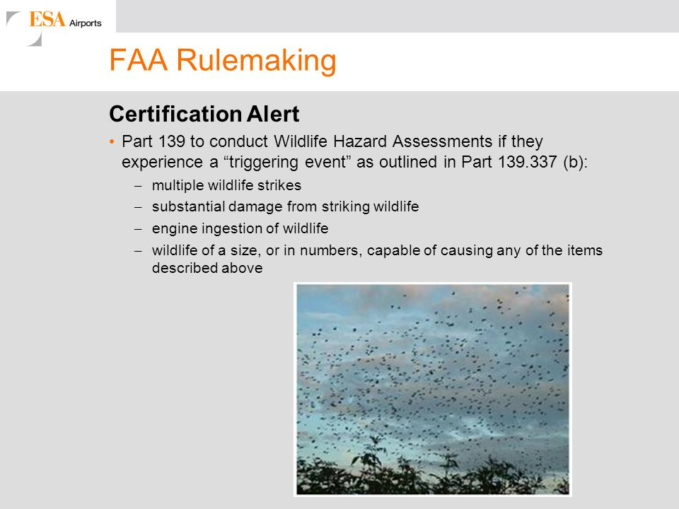 FAA Rulemaking Certification Alert