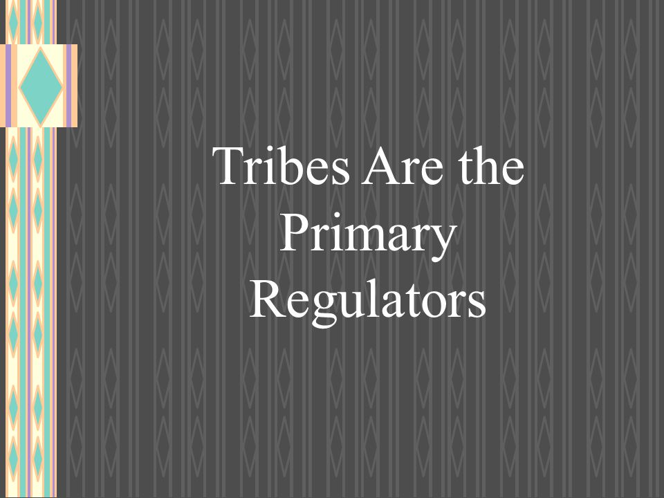 Tribes Are the Primary Regulators
