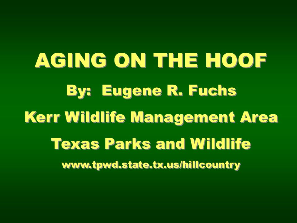 AGING ON THE HOOF By: Eugene R. Fuchs Kerr Wildlife Management Area