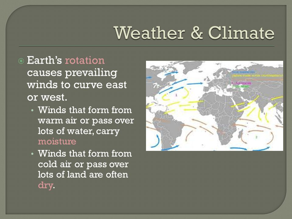 Weather & Climate Earth's rotation causes prevailing winds to curve east or west.