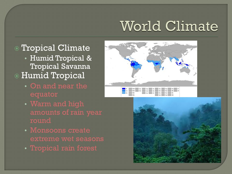 World Climate Tropical Climate Humid Tropical