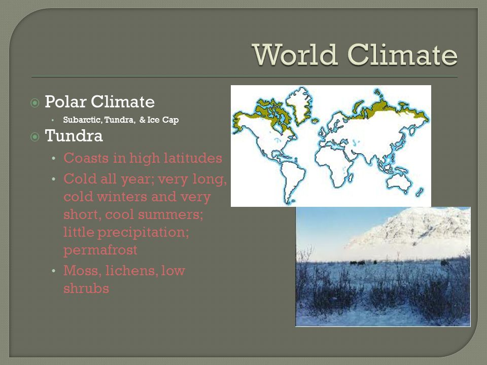 World Climate Polar Climate Tundra Coasts in high latitudes