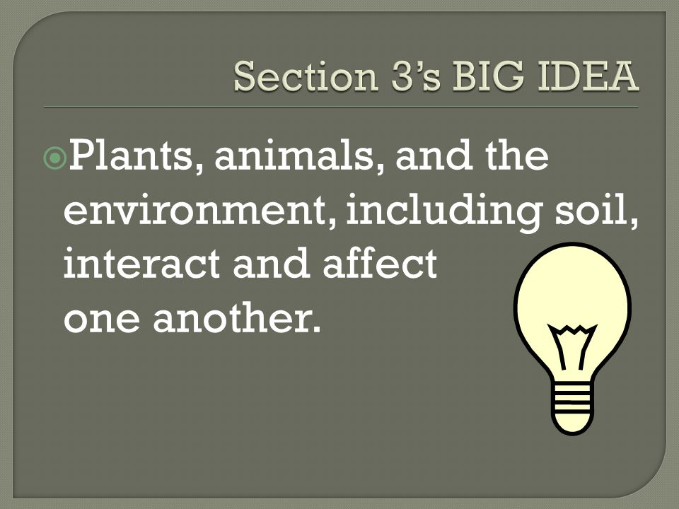 Section 3's BIG IDEA Plants, animals, and the environment, including soil, interact and affect one another.
