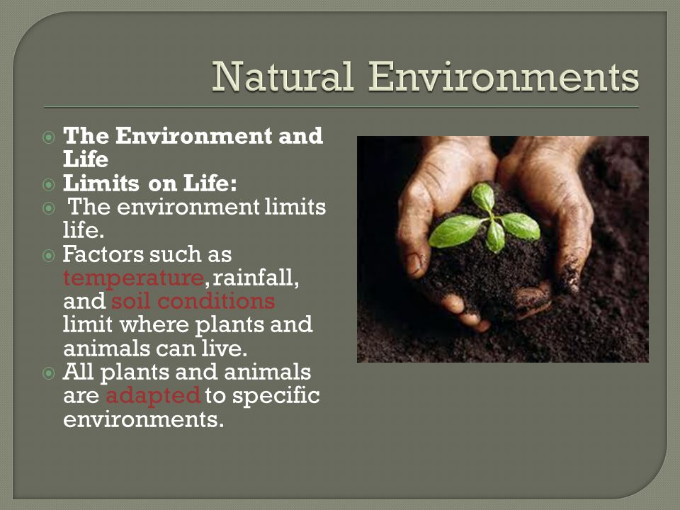 Natural Environments The Environment and Life Limits on Life: