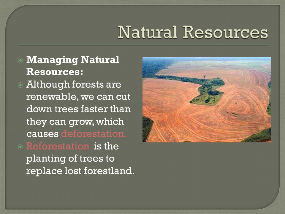 Natural Resources Managing Natural Resources: