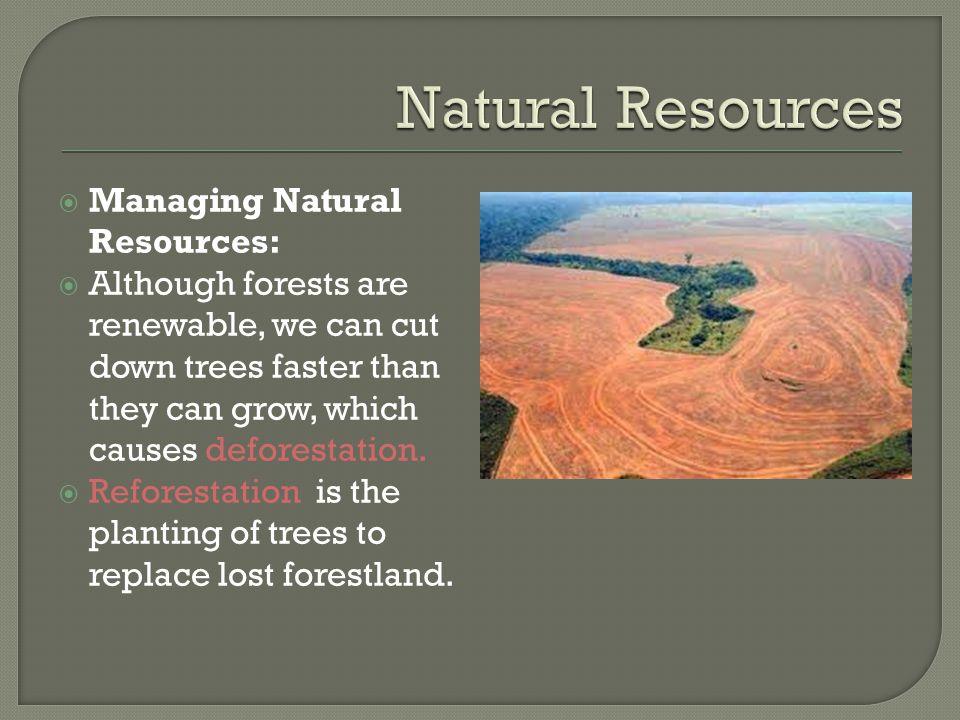 Natural Resources Managing Natural Resources:
