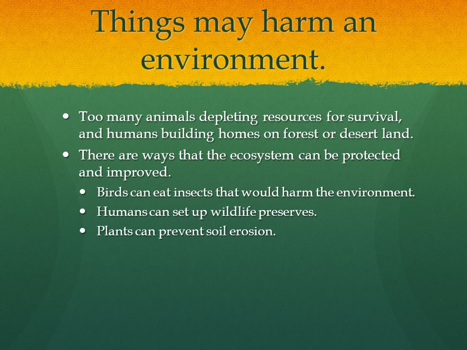 Things may harm an environment.