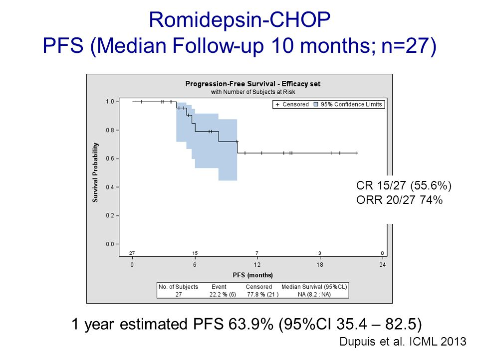 PFS (Median Follow-up 10 months; n=27)