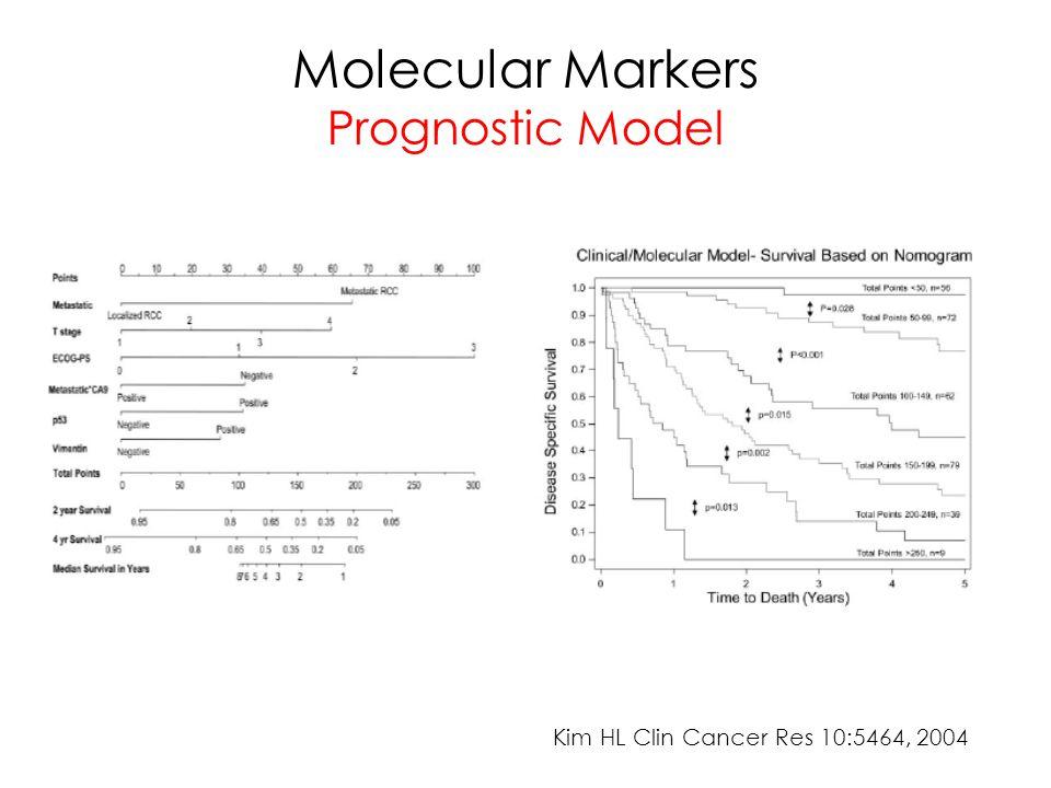 Molecular Markers Prognostic Model