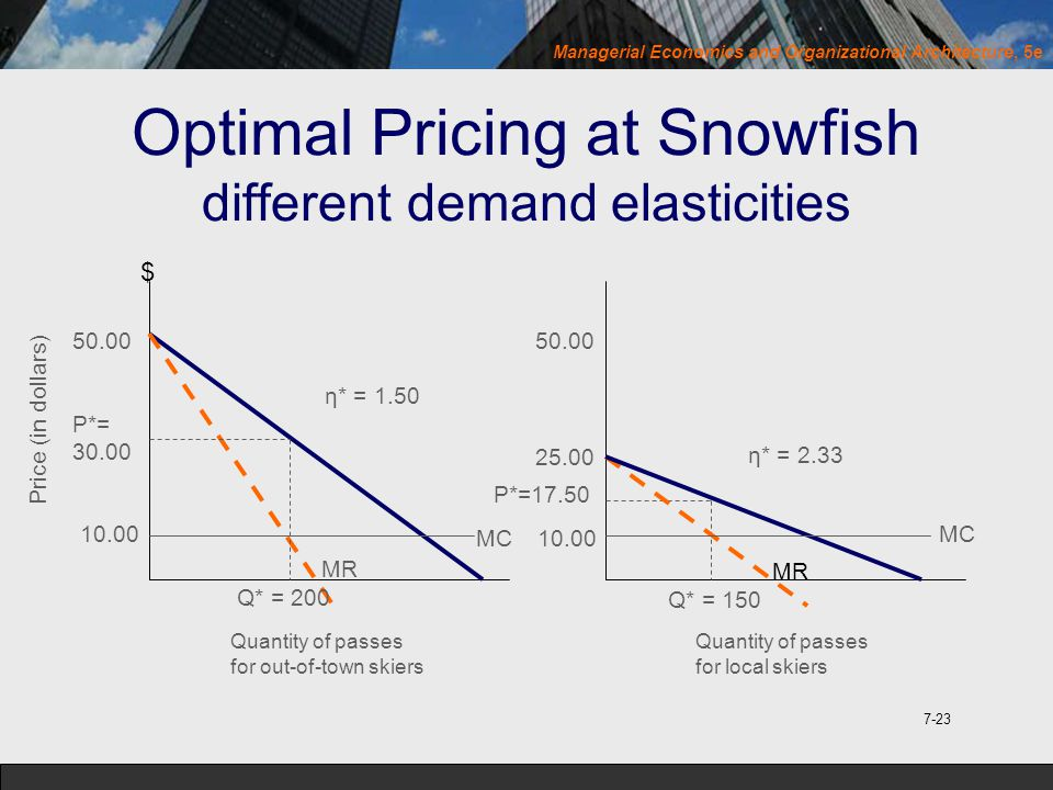 Optimal Pricing at Snowfish different demand elasticities