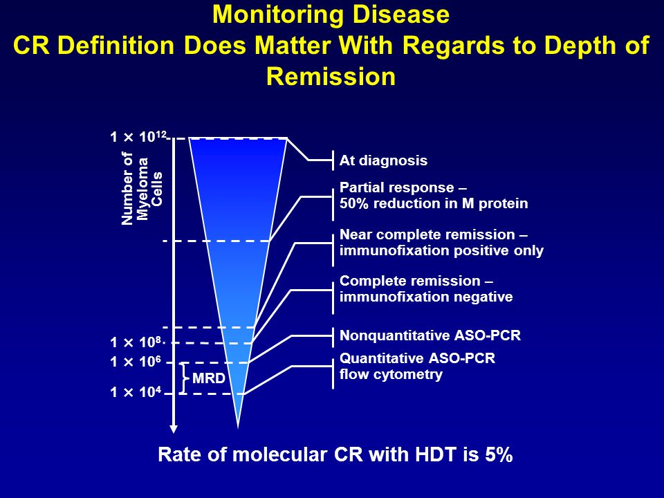 Number of Myeloma Cells Rate of molecular CR with HDT is 5%