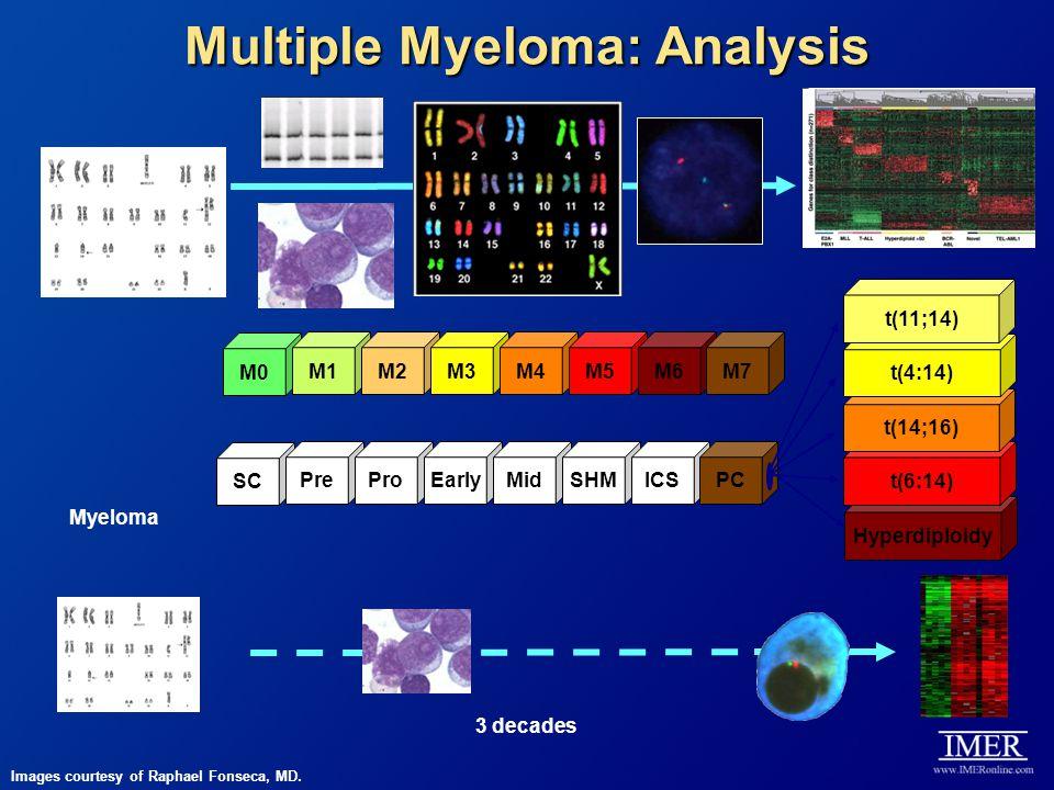 Multiple Myeloma: Analysis