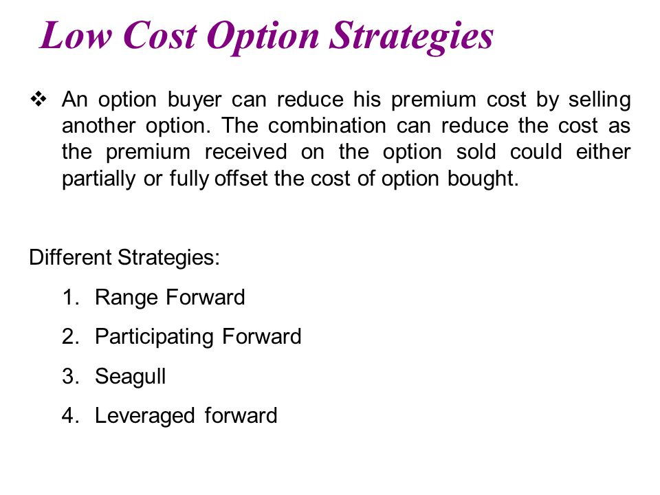 Low Cost Option Strategies