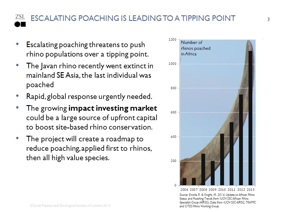 escalating poaching is leading to a tipping point