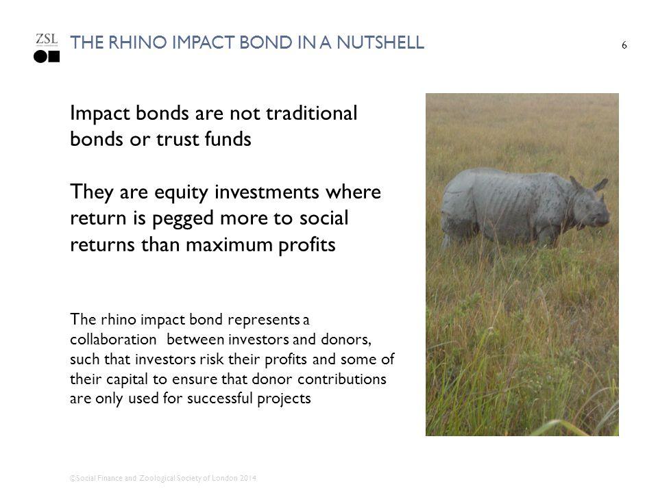 The rhino impact bond in a nutshell