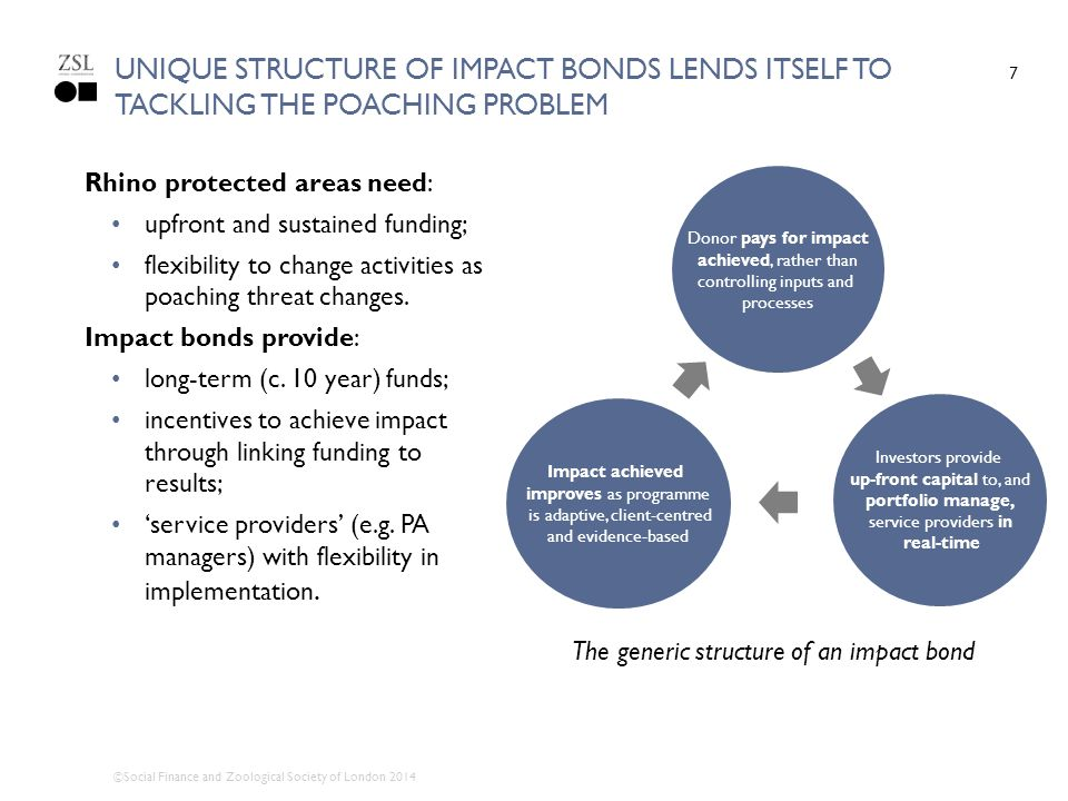 unique structure of IMPACT bonds lends itself to tackling the poaching problem