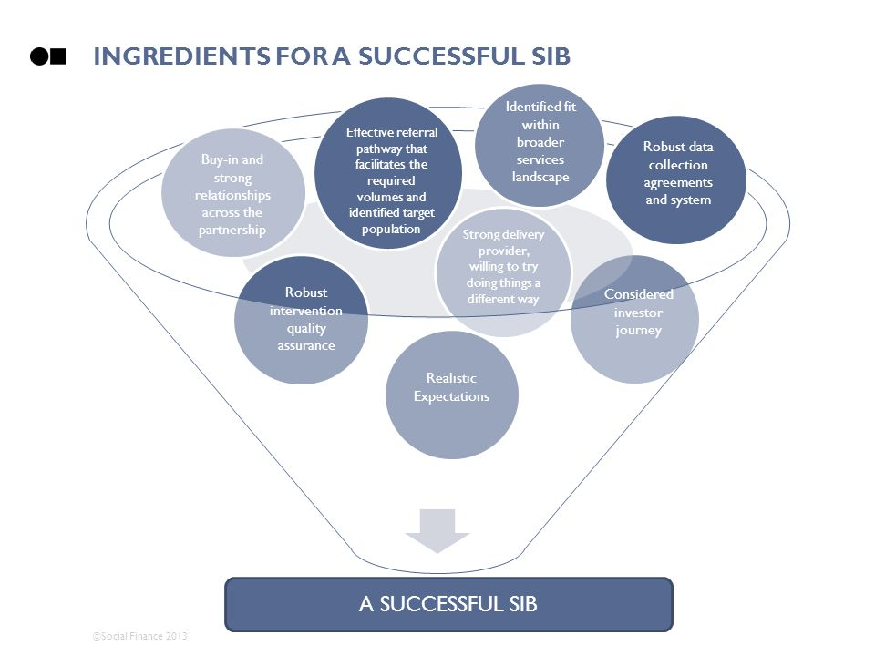 Ingredients FOR A SUCCESSFUL SIB