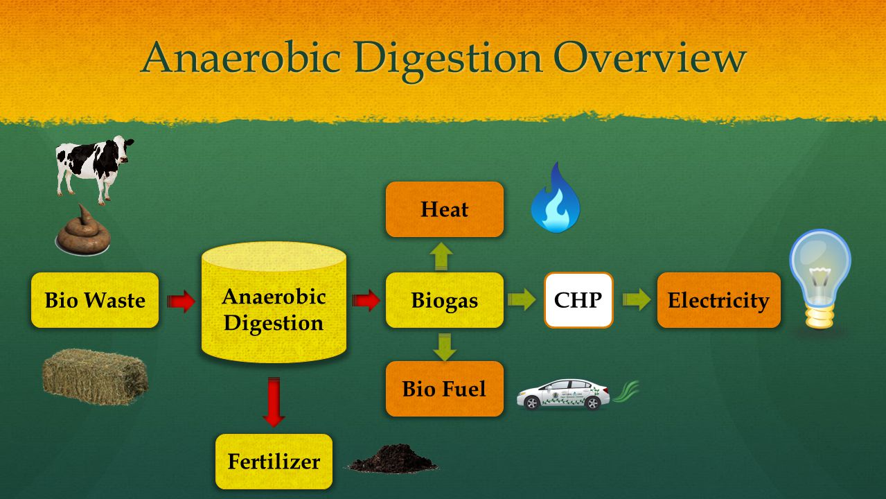Anaerobic Digestion Overview