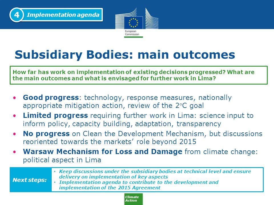 Subsidiary Bodies: main outcomes