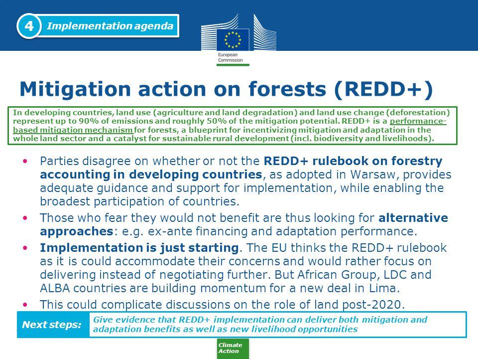 Mitigation action on forests (REDD+)