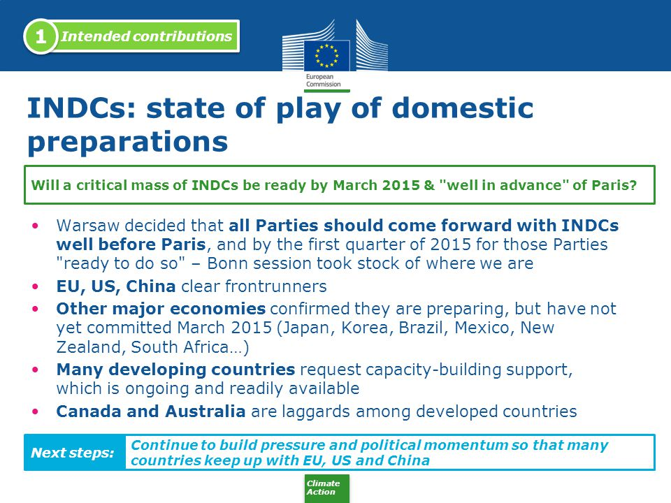 INDCs: state of play of domestic preparations