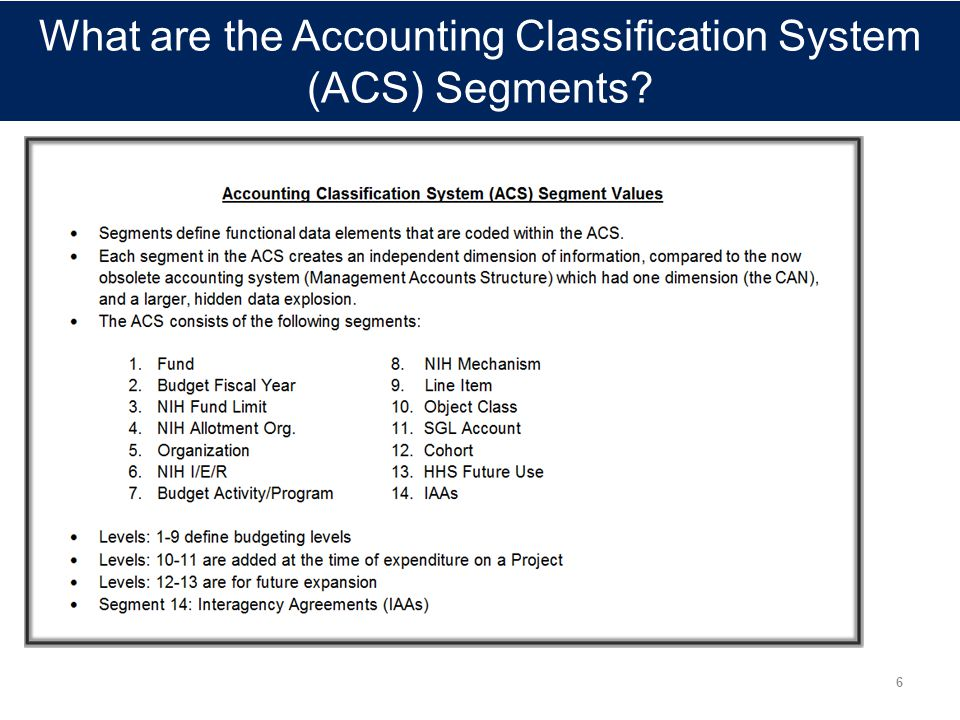 What are the Accounting Classification System (ACS) Segments