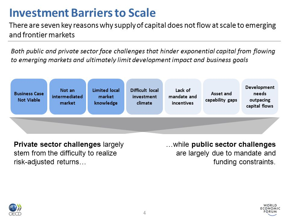 Investment Barriers to Scale