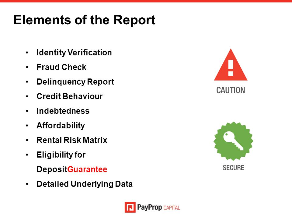 Elements of the Report Identity Verification Fraud Check