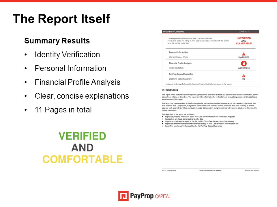 The Report Itself Summary Results Identity Verification