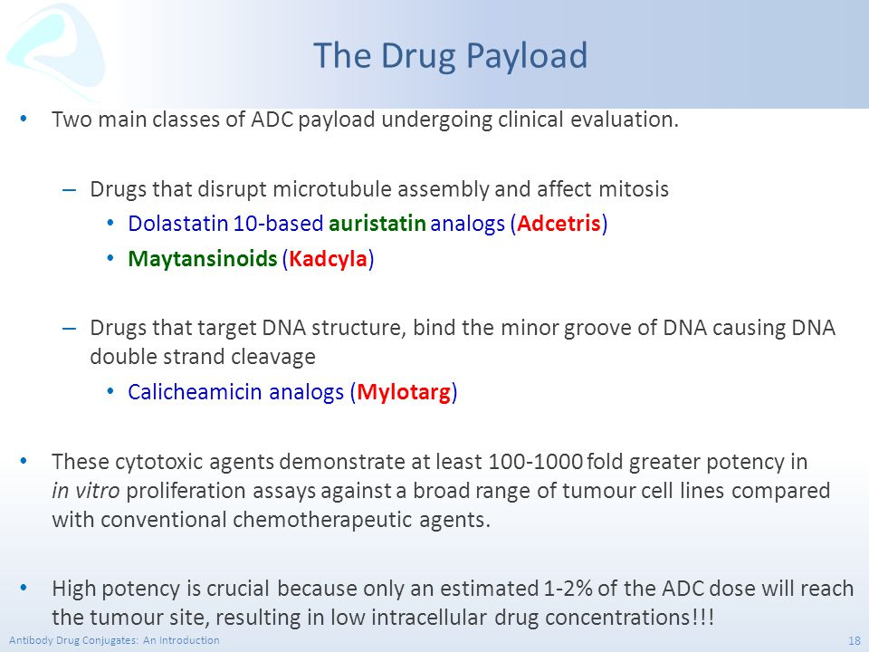 The Drug Payload Two main classes of ADC payload undergoing clinical evaluation. Drugs that disrupt microtubule assembly and affect mitosis.