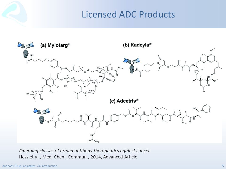 Licensed ADC Products Emerging classes of armed antibody therapeutics against cancer.