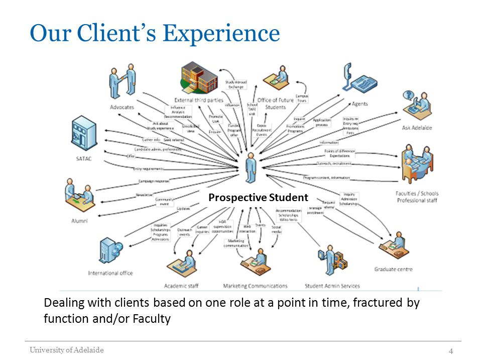 Our Client's Experience