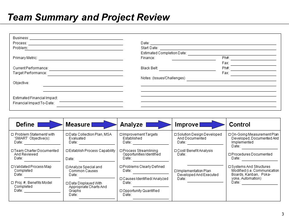 Team Summary and Project Review