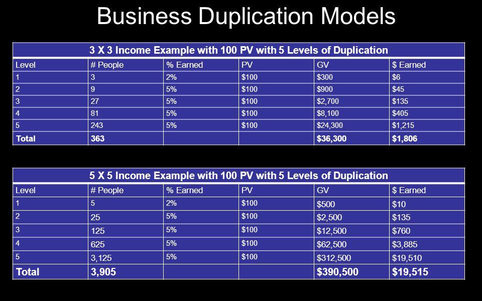 Business Duplication Models