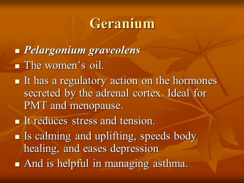 Geranium Pelargonium graveolens The women's oil.