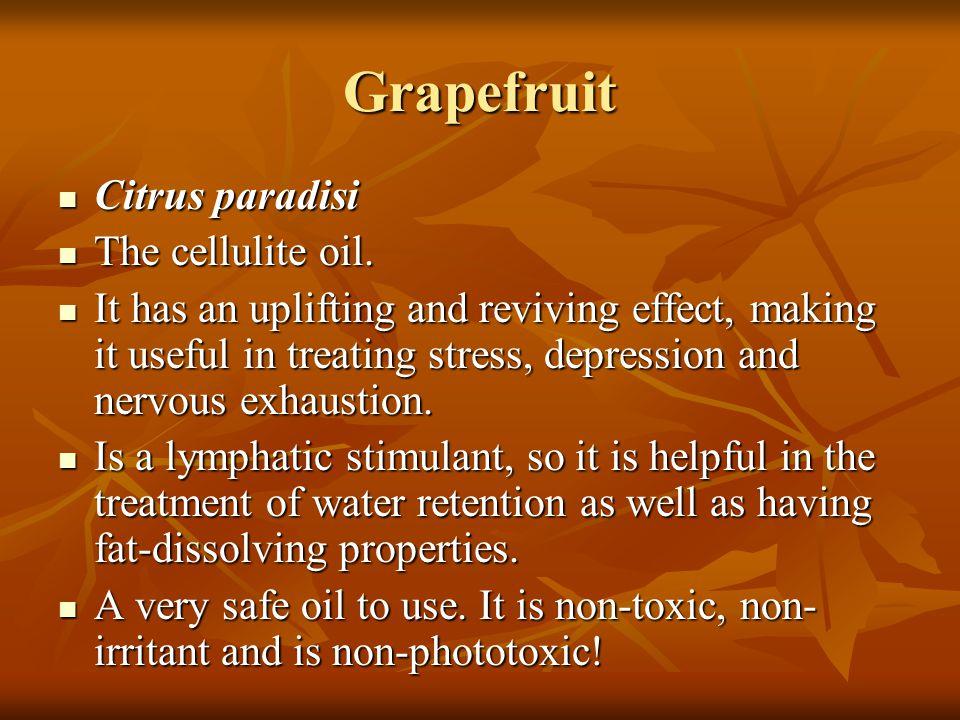 Grapefruit Citrus paradisi The cellulite oil.
