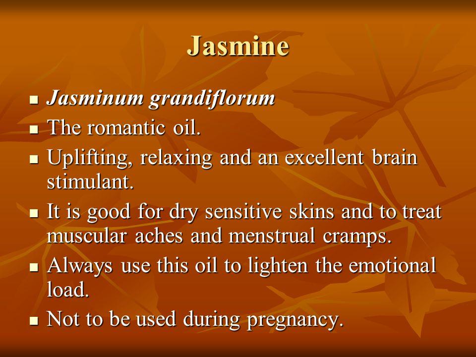 Jasmine Jasminum grandiflorum The romantic oil.