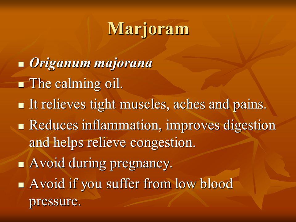 Marjoram Origanum majorana The calming oil.