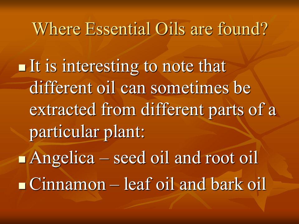 Where Essential Oils are found