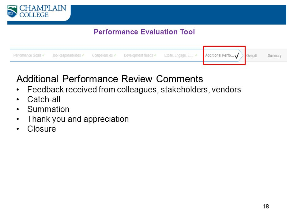 Additional Performance Review Comments