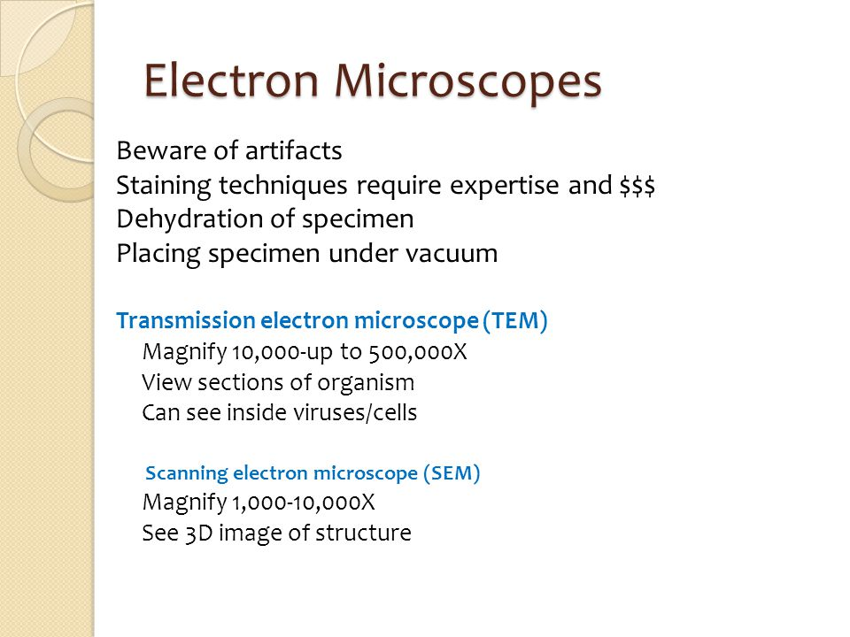 Electron Microscopes Beware of artifacts